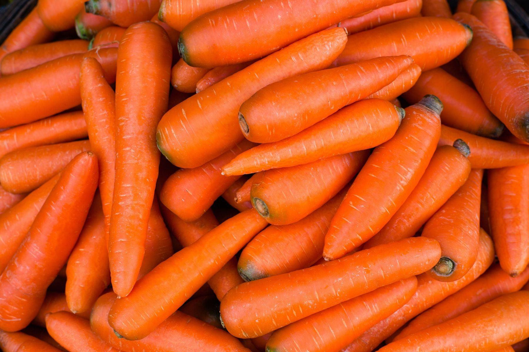 HappyFresh_How_To_Store_Foods_Properly_Carrots