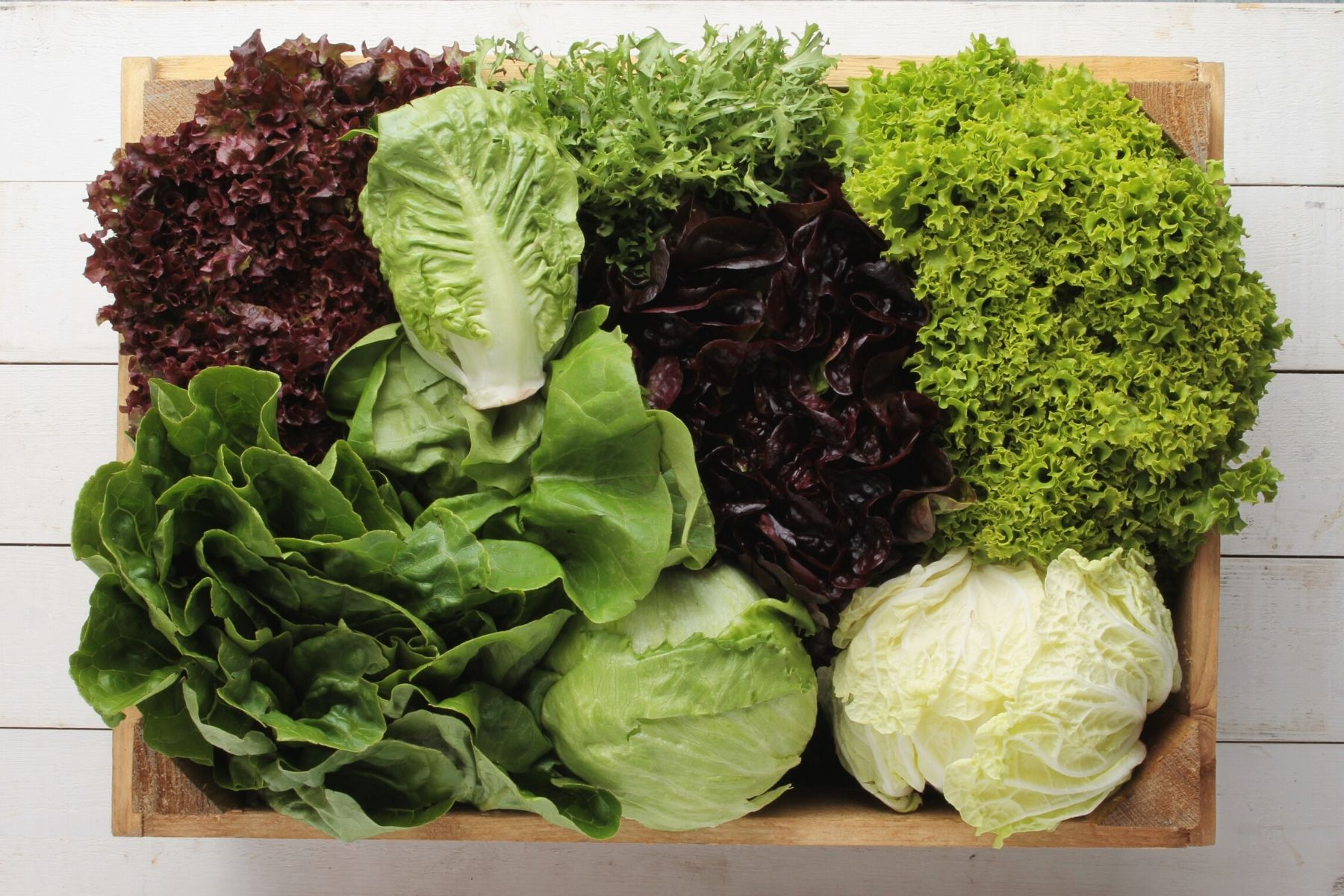 HappyFresh_How_To_Store_Foods_Properly_Vegetables