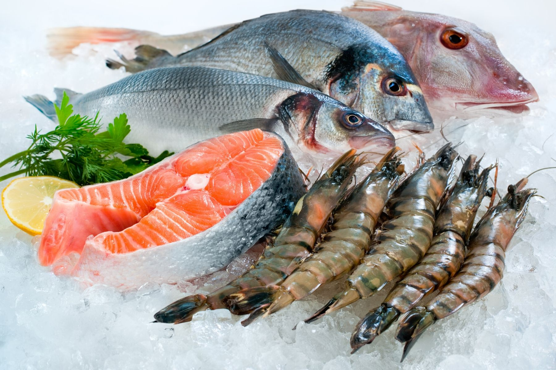 HappyFresh_How_To_Store_Foods_Properly_Seafoods