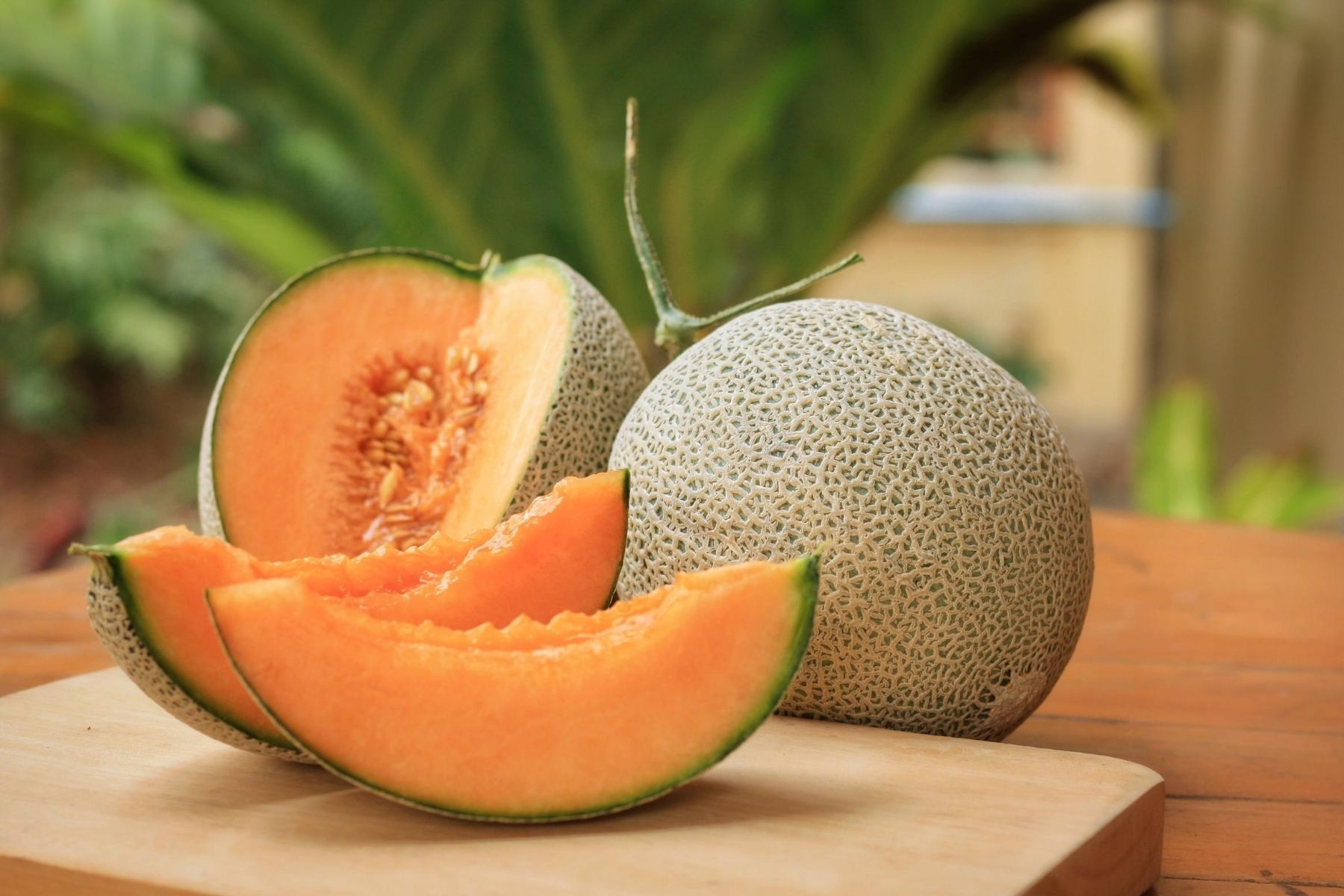 HappyFresh_10_Fruits_For_New_Moms_Cantaloupe