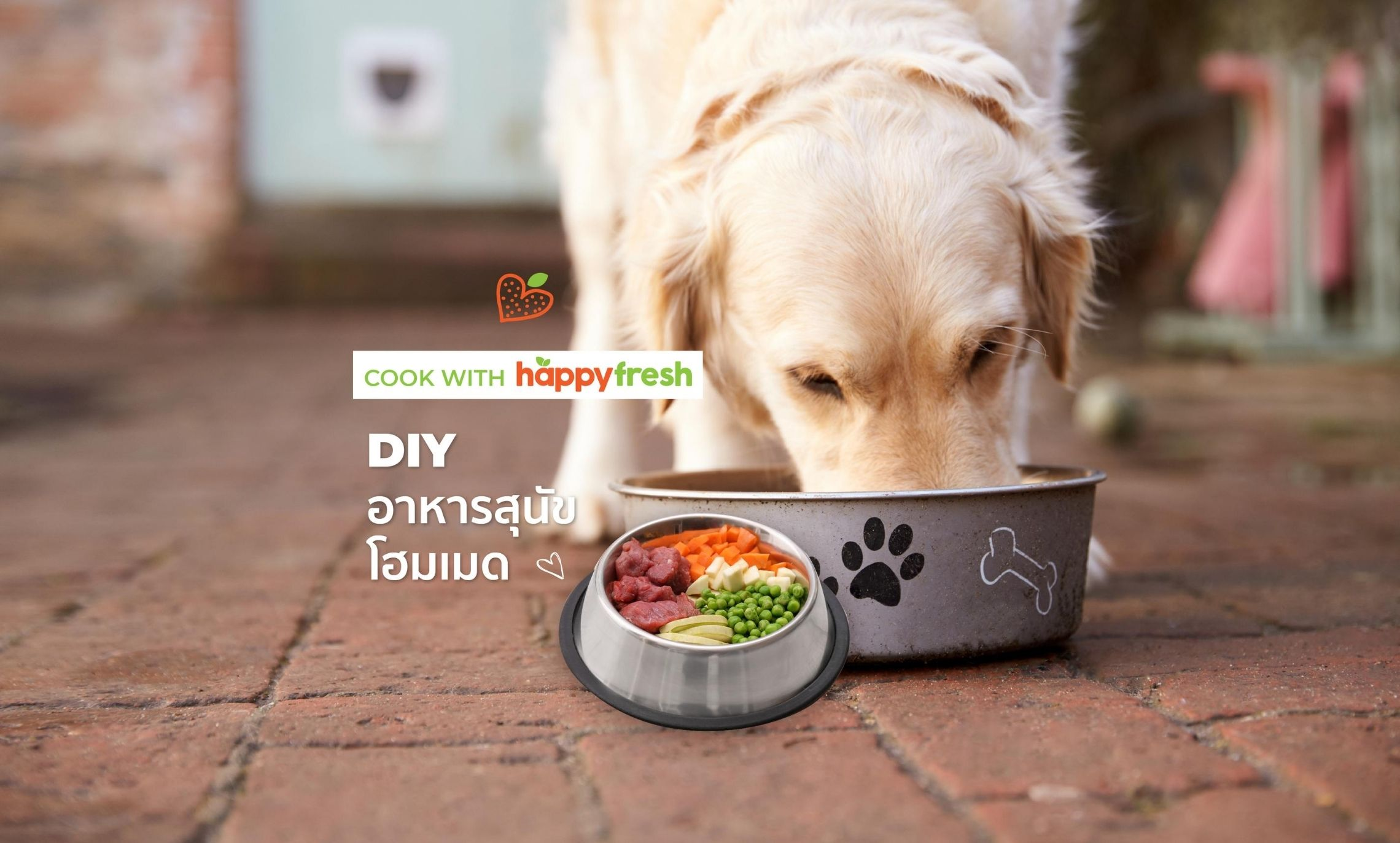 HappyFresh_DIY_Dog_Food_Feature